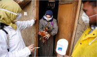 Egypt reports one Bird flu death