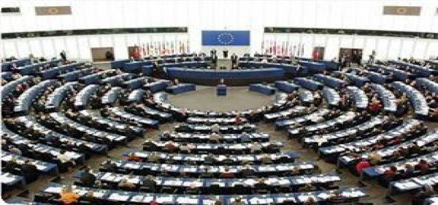 Palestinian activist Habib to hold hearing on Gaza in European parliament