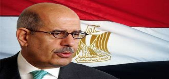 ElBaradei calls for boycotting elections