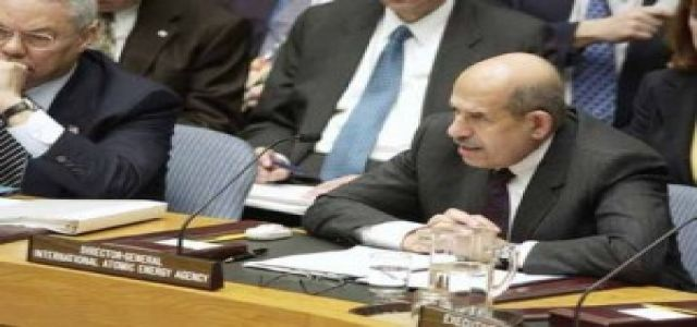 Egypt says didn't ask Kuwait to deport citizens over ElBaradei support