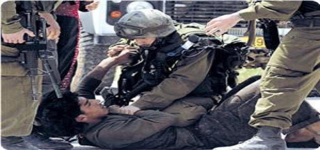 Mizan center: IOF killed 8 Palestinians, wounded 5 in January