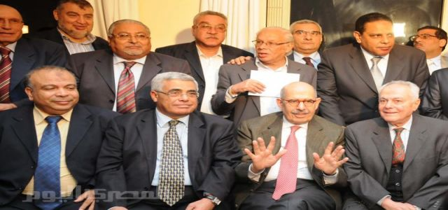 Egypt's Opposition calls for constitutional reform