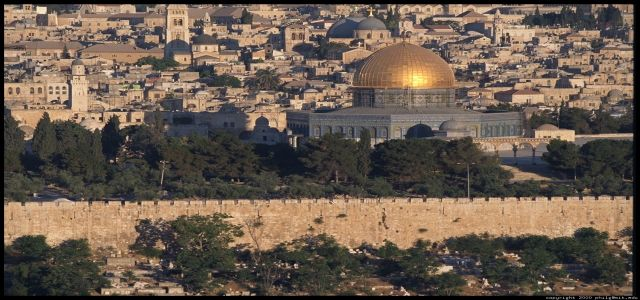 Uglo calls on Muslims to unite and defend the Aqsa Mosque