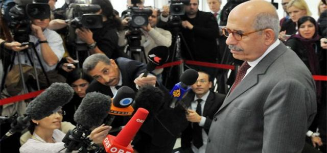 Analysts: ElBaradei's success needs MB grass root support