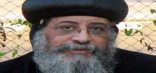 Egypt Coptic Pope Tawadros II Hopes Constitution Will Unite All Egyptians, Supports Article II