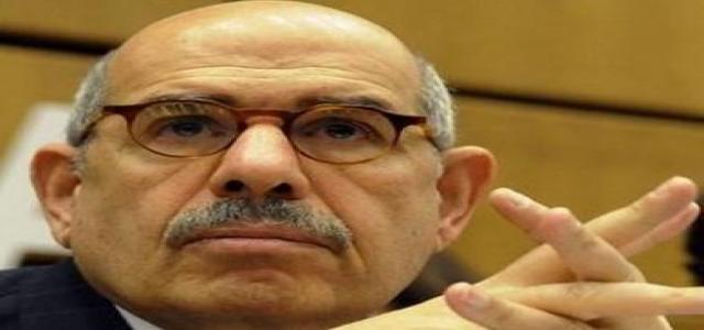 Government behind daughter's photos: ElBaradei