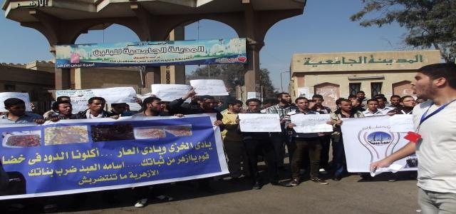 FJP: Dismissal of Azhar University President Good Start Point for Purging Inefficient Officials