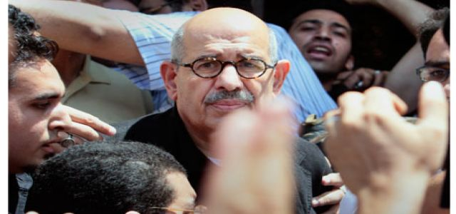 Mohamed ElBaradei joins Egyptian sit-in over police death case